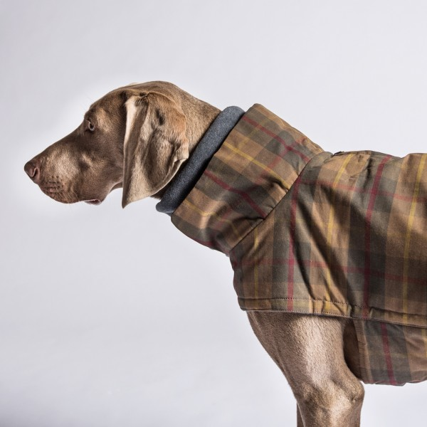Hundemantel Brooklyn Waxed Tartan - wasserdicht